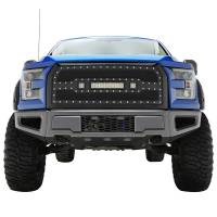 Paramount - 15-17 Ford F-150 Evolution Matte Black Stainless Steel Grille - Image 1